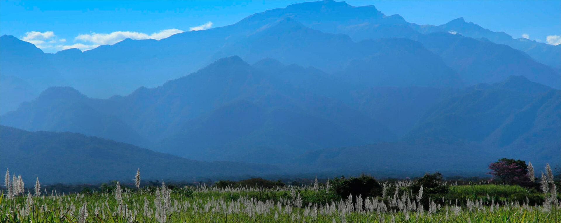 En Ledesma, estamos comprometidos con el desarrollo sostenible.
