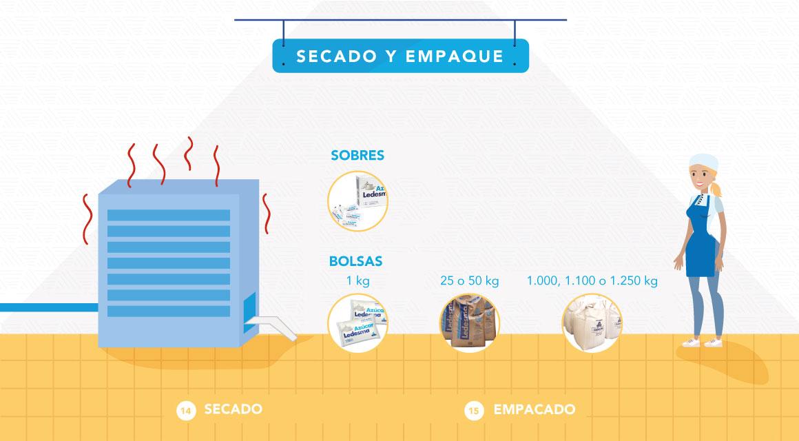 Proceso Secado y Empaque slide 5