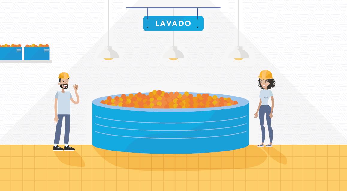Proceso Lavado Jugos y frutas slide 2